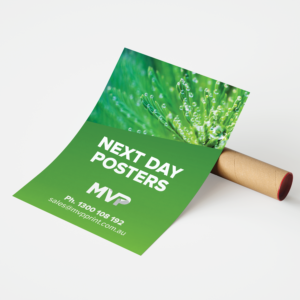 Next Day Despatch Posters